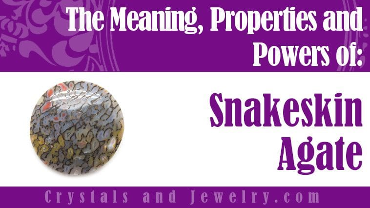snakeskin agate meaning