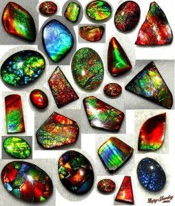 Ammolite jewelry stones
